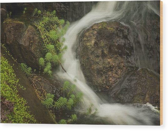 Wood Print featuring the photograph Flowing Stream by David Coblitz