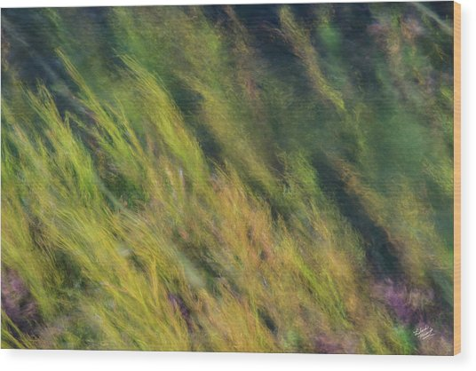 Flowing Textures Wood Print by Leland D Howard