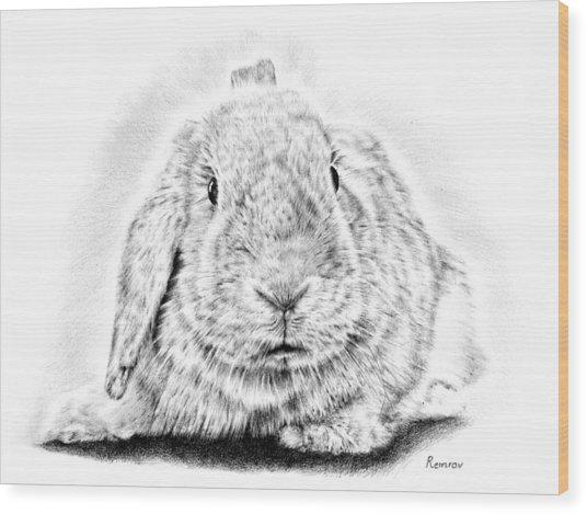 Fluffy Bunny Wood Print