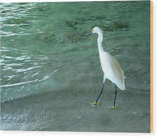 Egret Under Bridge Wood Print