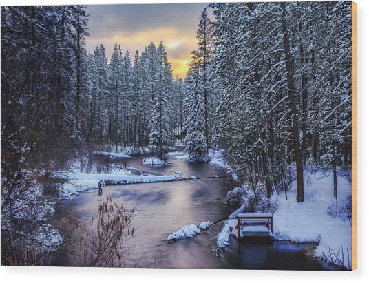 Fly Fisherman On The Metolius Wood Print