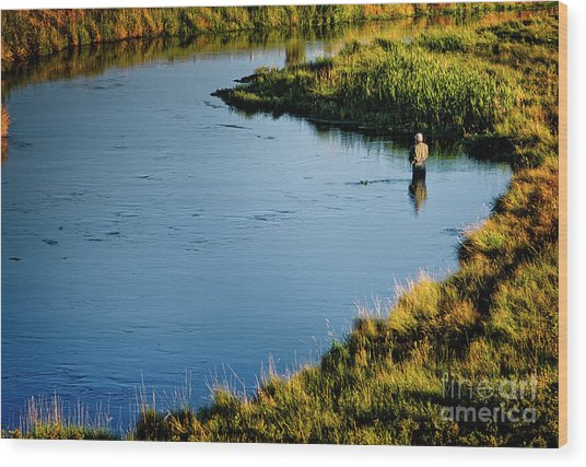 Wood Print featuring the photograph Fly Fishing  by Scott Kemper