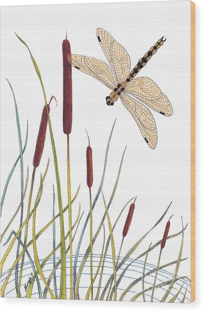 Fly High Dragonfly Wood Print