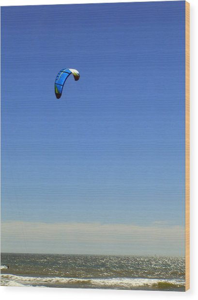 Fly In The Sky. Wood Print by Robin Hernandez