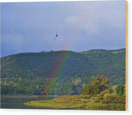Fly Over The Rainbow Wood Print