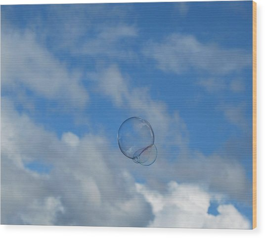 Flying Free Wood Print by Marilynne Bull