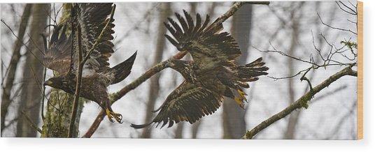 Flying In The Woods Pe002 Wood Print by Yoshiki Nakamura