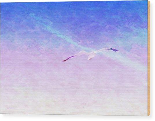 Flying Solo Wood Print