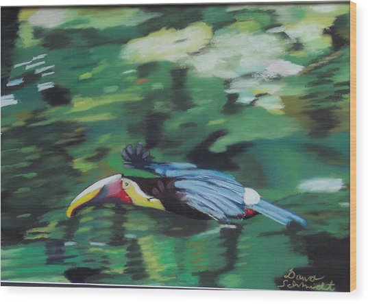 Flying Toucan In Costa Rica Wood Print