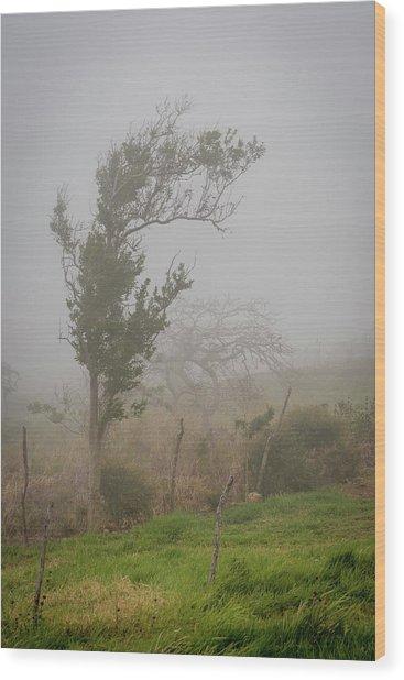 Fog And Wind Wood Print