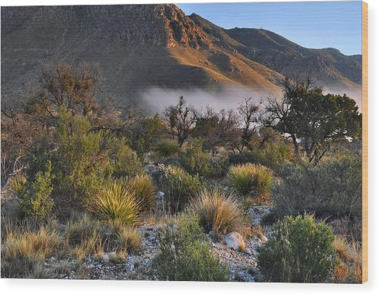 Fog At Sunrise - Guadalupe Mountains Wood Print