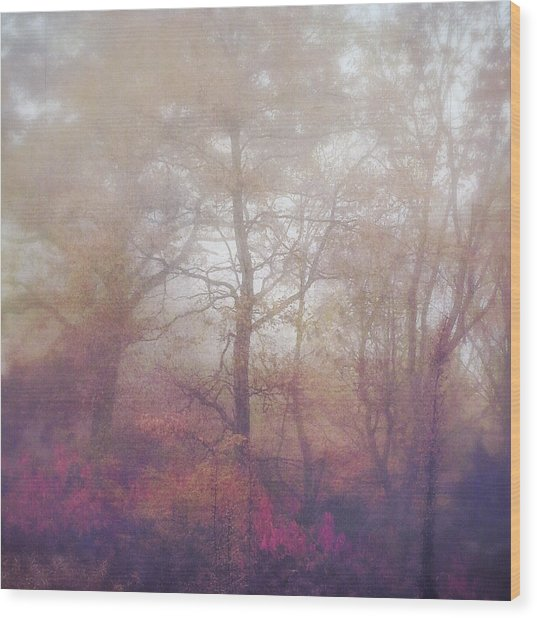 Fog In Autumn Mountain Woods Wood Print