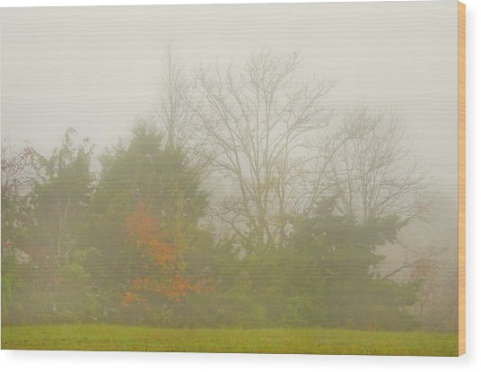 Fog In Autumn Wood Print