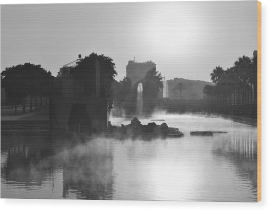 Fog In Park Monochrome Wood Print