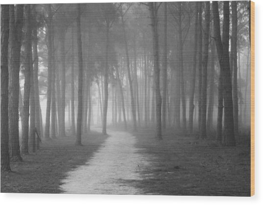 Fog In The Forest Wood Print by Gary Bydlo