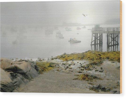 Fog In The Morn Wood Print