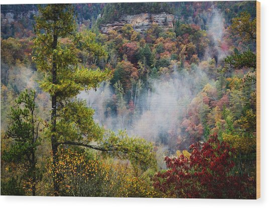 Fog In The Valley Wood Print