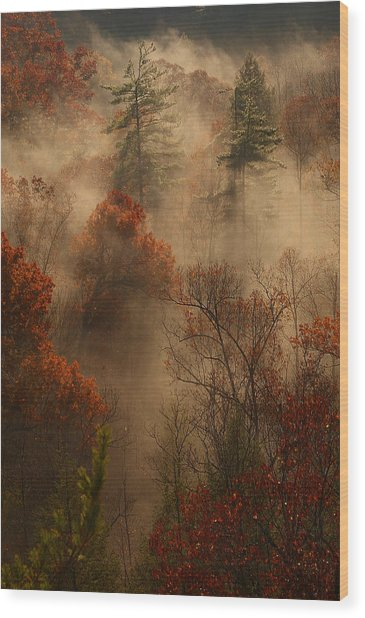 Fog In The Valley Wood Print by Ulrich Burkhalter