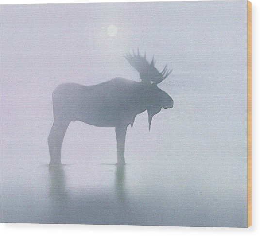 Fog Moose Wood Print
