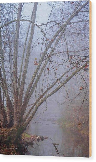 Fog On Buffalo Creek 1 Wood Print
