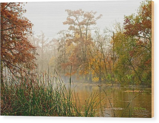 Fog On The Bayou Wood Print by Bill Perry