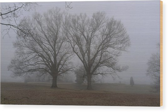 Fog On The Yorktown Battlefield Wood Print