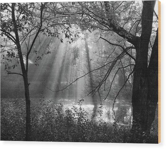 Fog Rays Wood Print