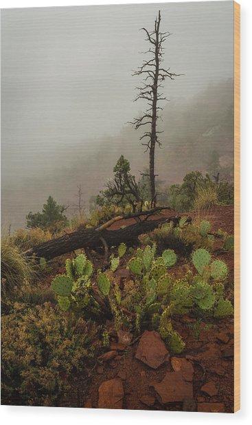 Fog Rolling In Wood Print