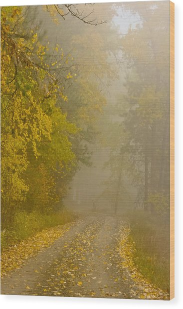Foggy Autumn Morn Wood Print