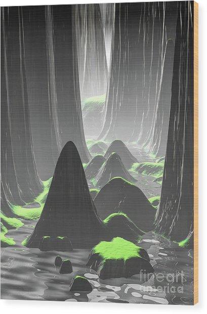 Foggy Canyon Walls Wood Print