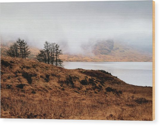 Foggy Day At Loch Arklet Wood Print