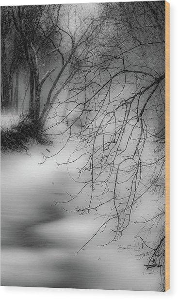 Foggy Feeder Wood Print