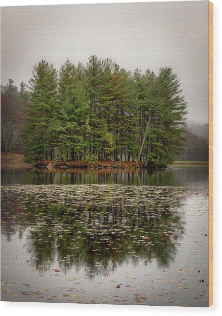 Foggy Island Reflections Wood Print