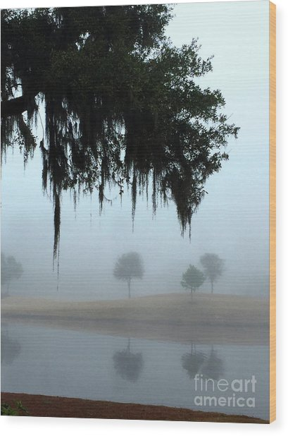 Foggy Morn Reflections Wood Print