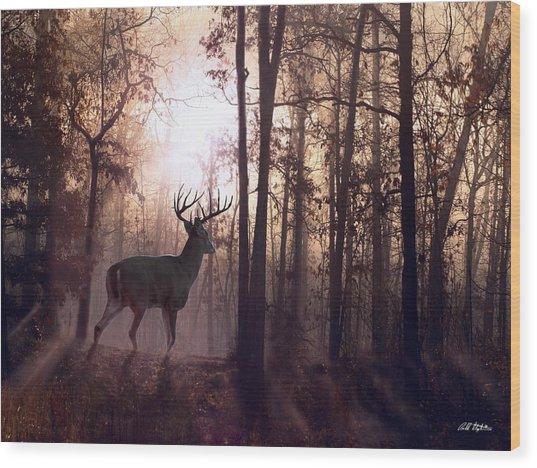 Foggy Morning In Missouri Wood Print