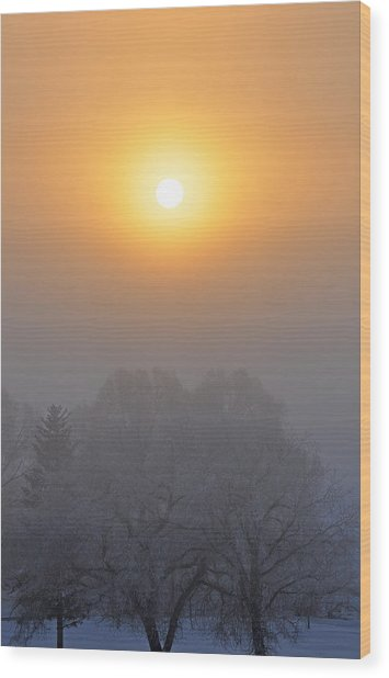 Foggy Morning In Montana's Gallatin Valley Wood Print