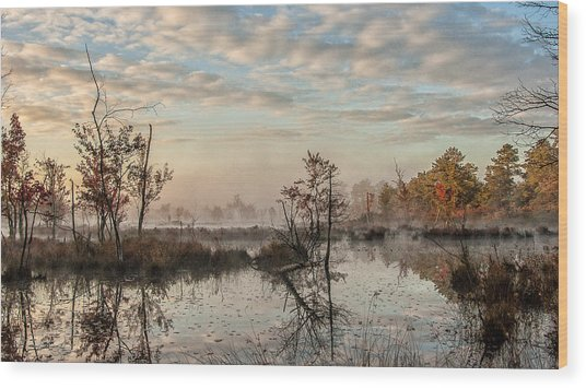 Foggy Morning In The Pines Wood Print