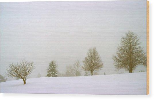 Foggy Morning Landscape 15 Wood Print by Steve Ohlsen