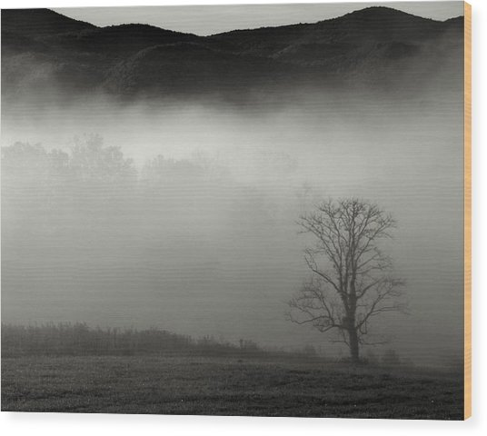 Foggy Mountain-tennessee Wood Print