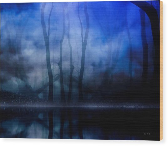 Foggy Night Wood Print