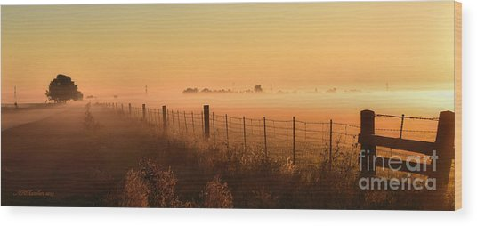 Foggy Sunrise On Hawkins Rd Wood Print