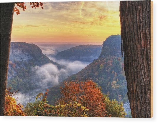 Foggy Sunrise Over Letchworth State Park In New York Wood Print