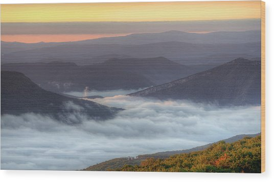 Foggy Valley Morning Wood Print by Michael Donahue