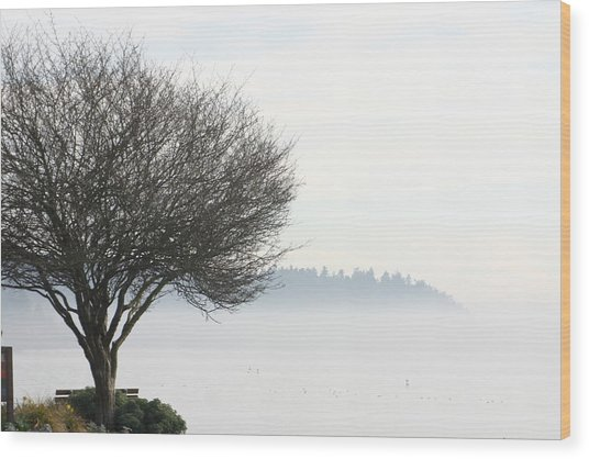 Fogscape Wood Print by Trudy Parman