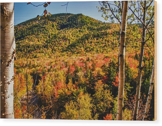 Foliage View From Crawford Notch Road Wood Print