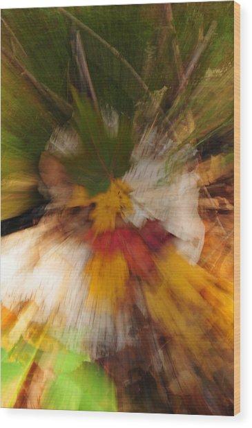 Foliage Zoom Wood Print by Nancy Marshall