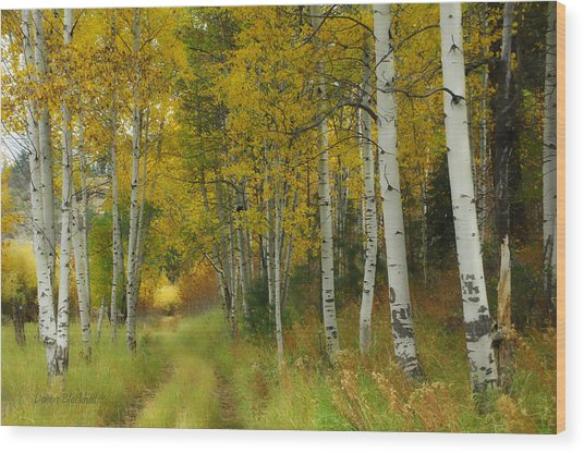 Follow The Light Wood Print