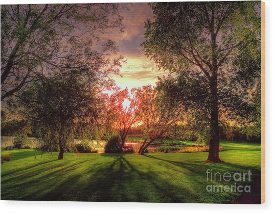 Follow The Light Wood Print by Kim Shatwell-Irishphotographer