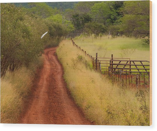 Follow The Red Dirt Road Wood Print