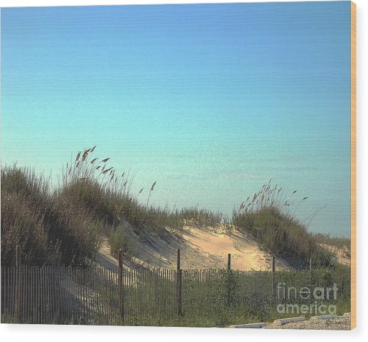 Folly Beach Sc Dunes Wood Print